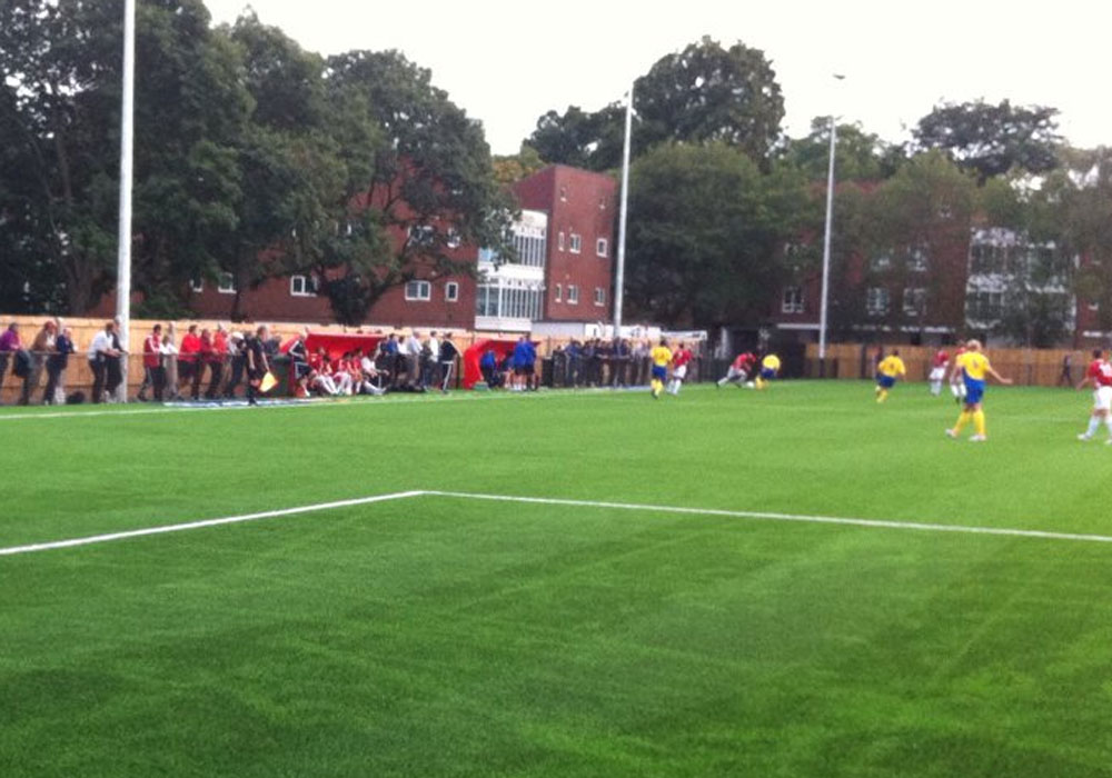 Snap of the crowd at Bracknell Town vs Ascot United.