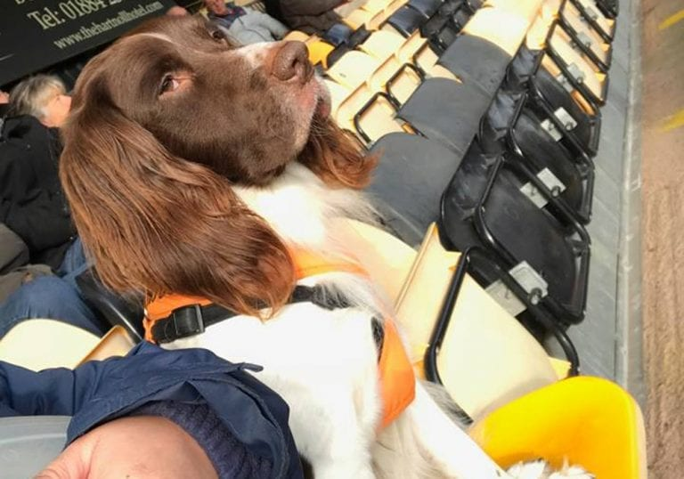 Dale James and his dog at a Tiverton Town game. Photo: Dale James.