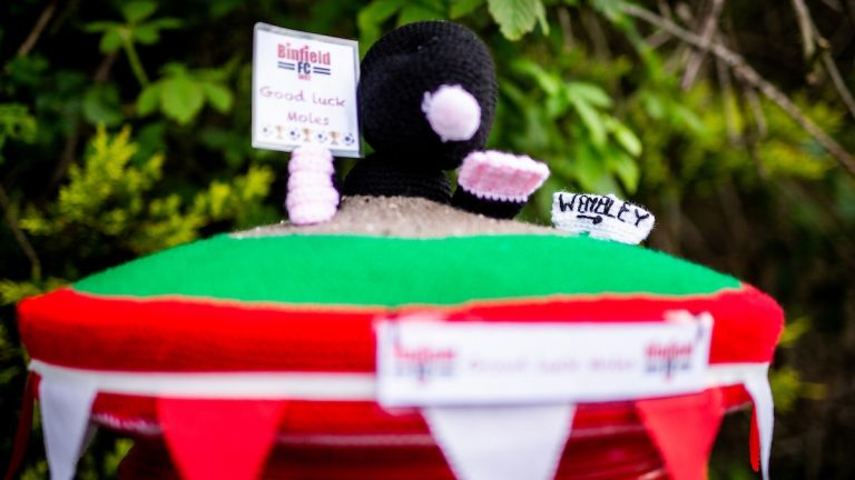 Tracey Devlin has created this wonderful postbox top in the village. Photo: Neil Graham / ngsportsphotography.com